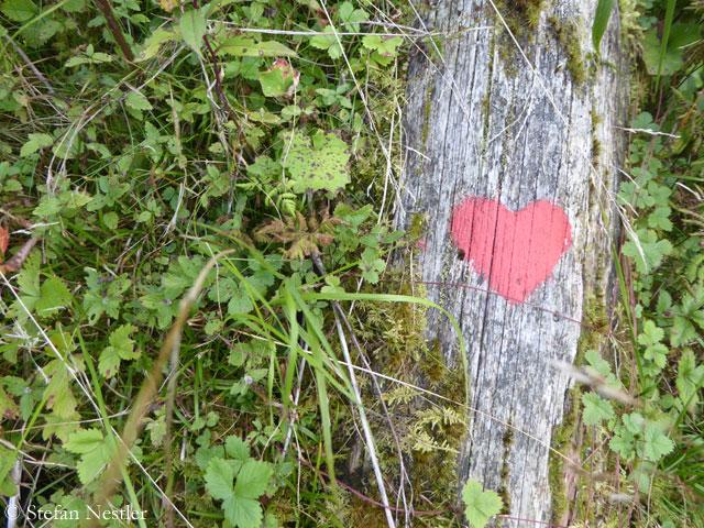 Salzburger-Land-Herz auf Stein