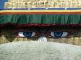 buddhas-augen