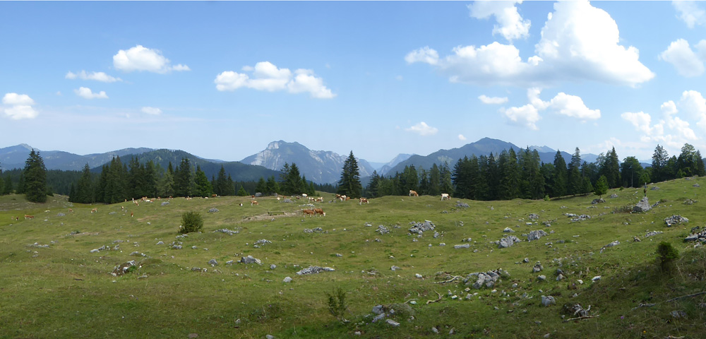 Walchsee_Alm_Panorama