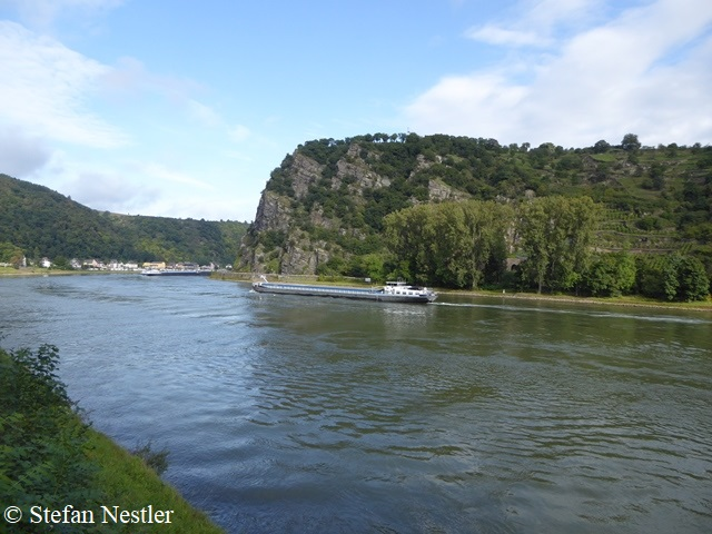 8-Loreley