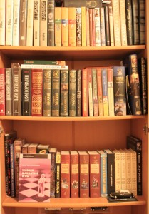 Regale voller Bücher in einer kleinen Haus-Bibliothek (Foto: Pavel Mylnikov).
