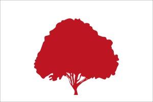 Bandeira possível para o Matriarcado de Pindorama, desenhada por Philippe Leon
