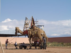 Camel at Eclats de lune