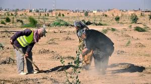 Farmers in Kurdistan
