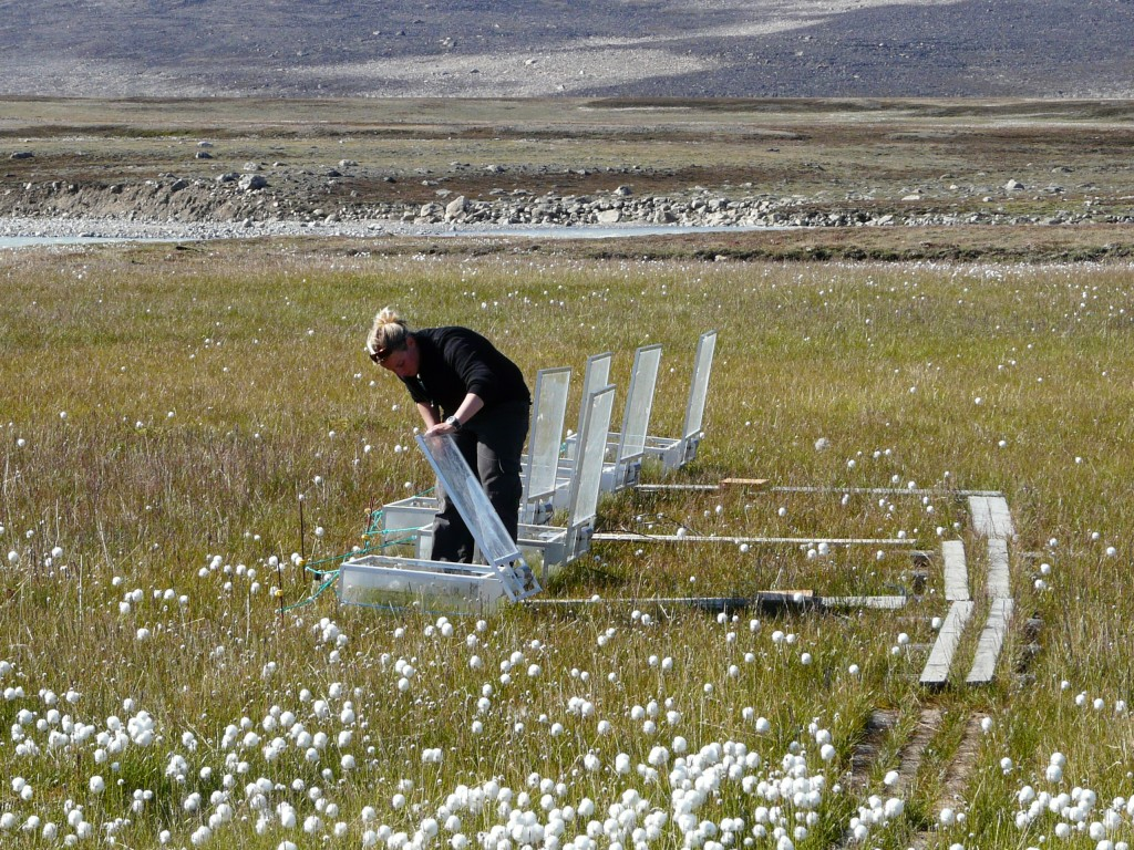 Scientists at measuring stations like the one I viisted at Zackenberg, Greenland, measure the amount of greenhouse gases emitted by melting permafrost.