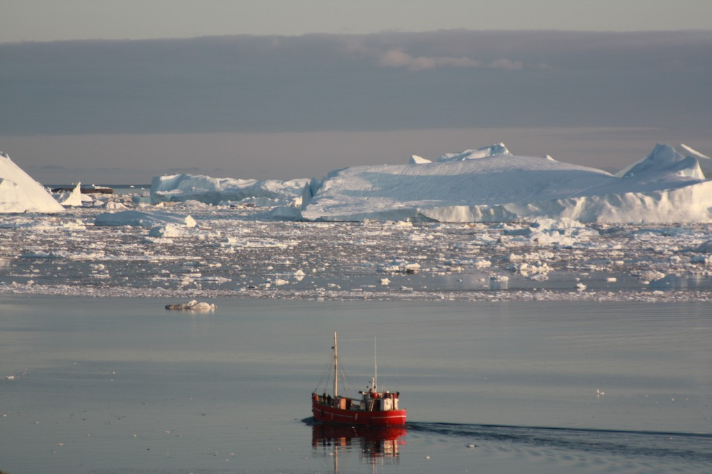 Boat and icebergs Greenland, Irene Quaile 2009