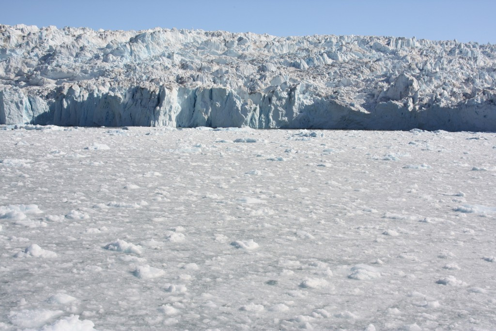Greenland ice sheet is discharging ice into the ocean at an alarming rate. (Pic: I.Quaile)