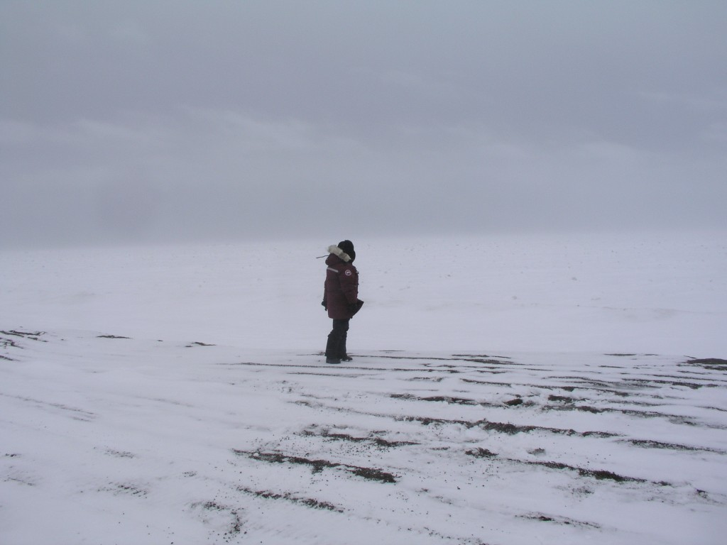 Visit to the site of a lost Inupiat village at Point Barrow, 2008 (Pic.: I.Quaile)