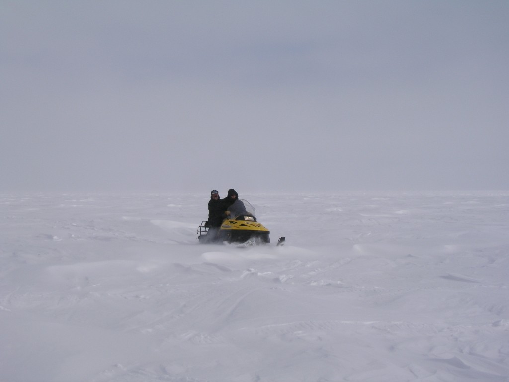 Ice free Arctic Barrow by 2020? (Pic. I.Quaile)