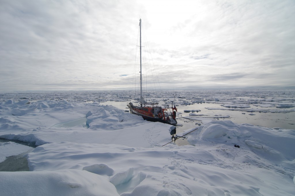 Yacht Peter I seeking a passage through the ice (2010)