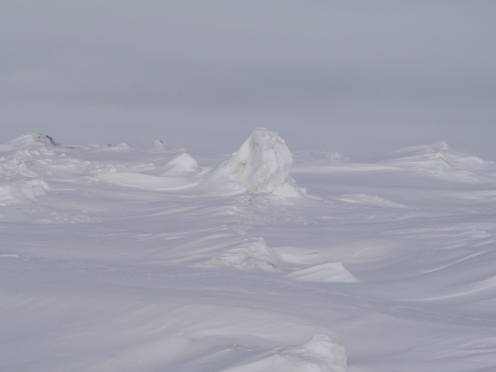 Beautiful when frozen:  Chukchi Sea, Barrow, Alaska (Pic: I.Quaile)