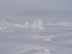 Frozen Waves, Chukchi Sea, Barrow, Alaska