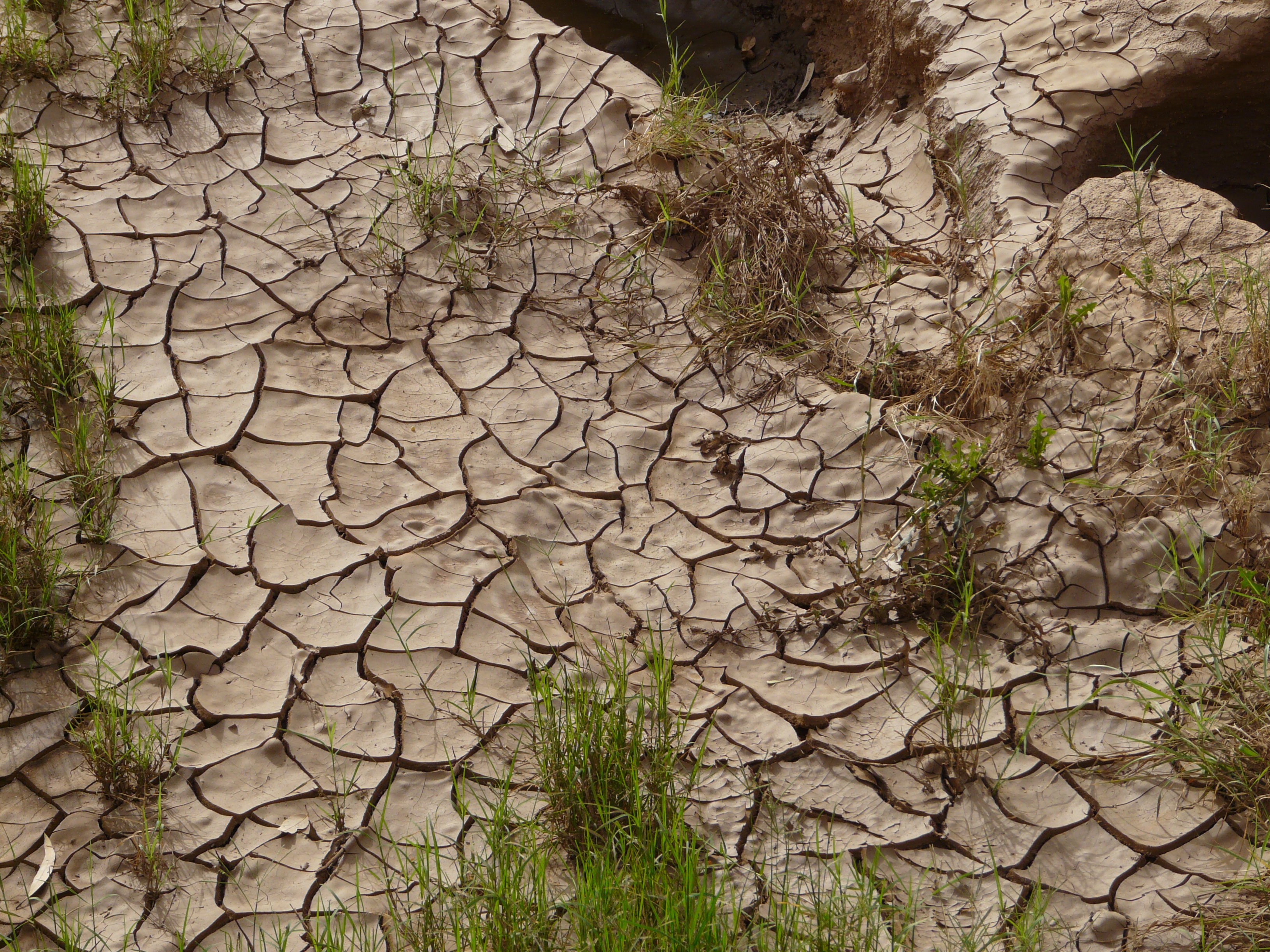Australia dried up riverbed