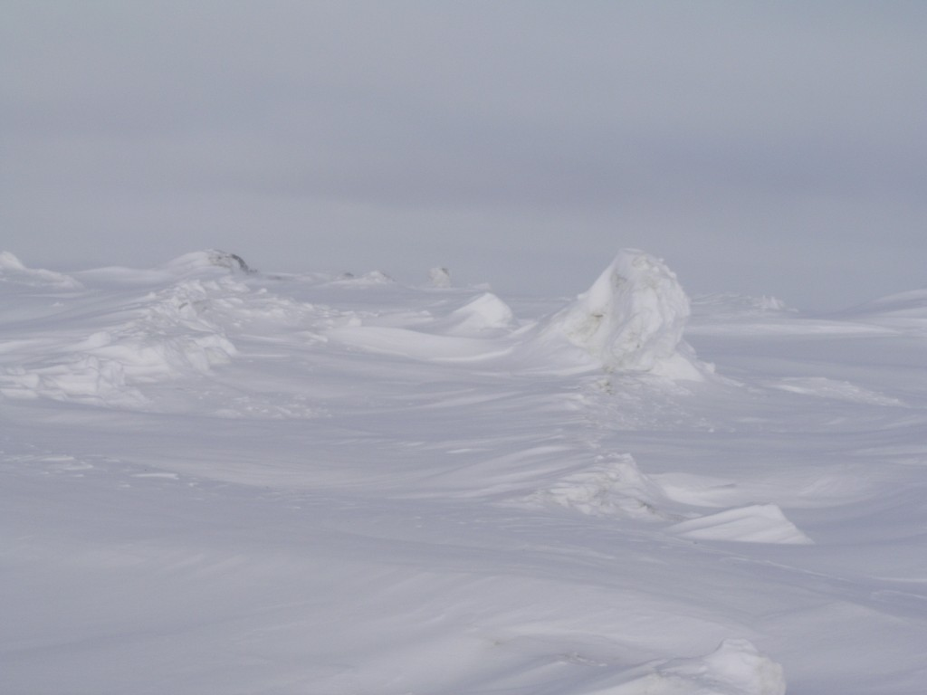The frozen waves at Barrow reminded me of the meringue topping on Baked Alaska (Pic: I.Quaile)