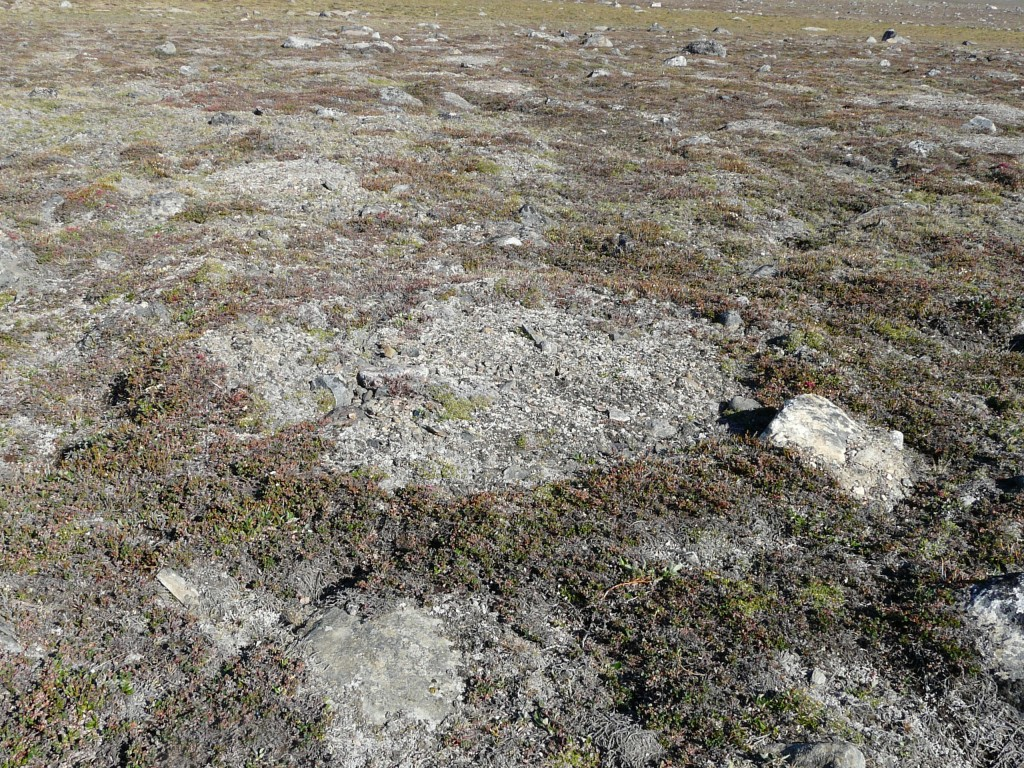 Permafrost structures in Greenland (Pic: I.Quaile)