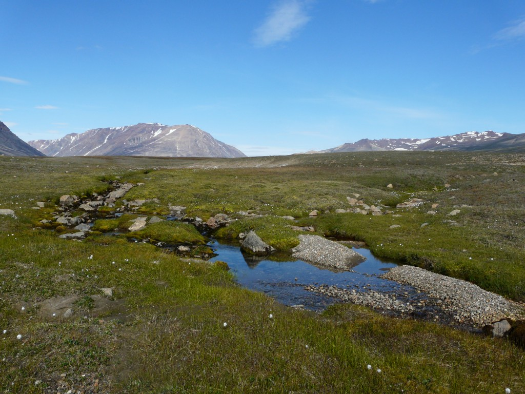 Arctic freswater systems are changing with the climate. (Pic: I.Quail)