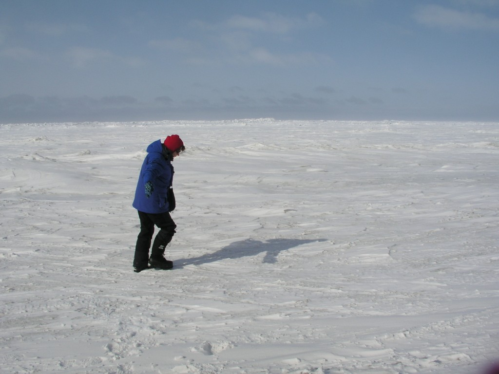Sea ice can be very thick...(Pic: I.Quaile)