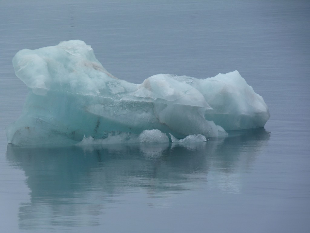 Melting ice in the waters off Spitsbergen. Already too hot for some?