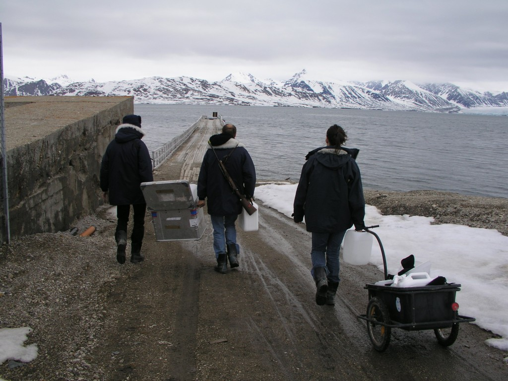 Can Arctic marine biologists work fast enough to keep up with climate change? (Ny Alesund, Pic: I.Quaile)