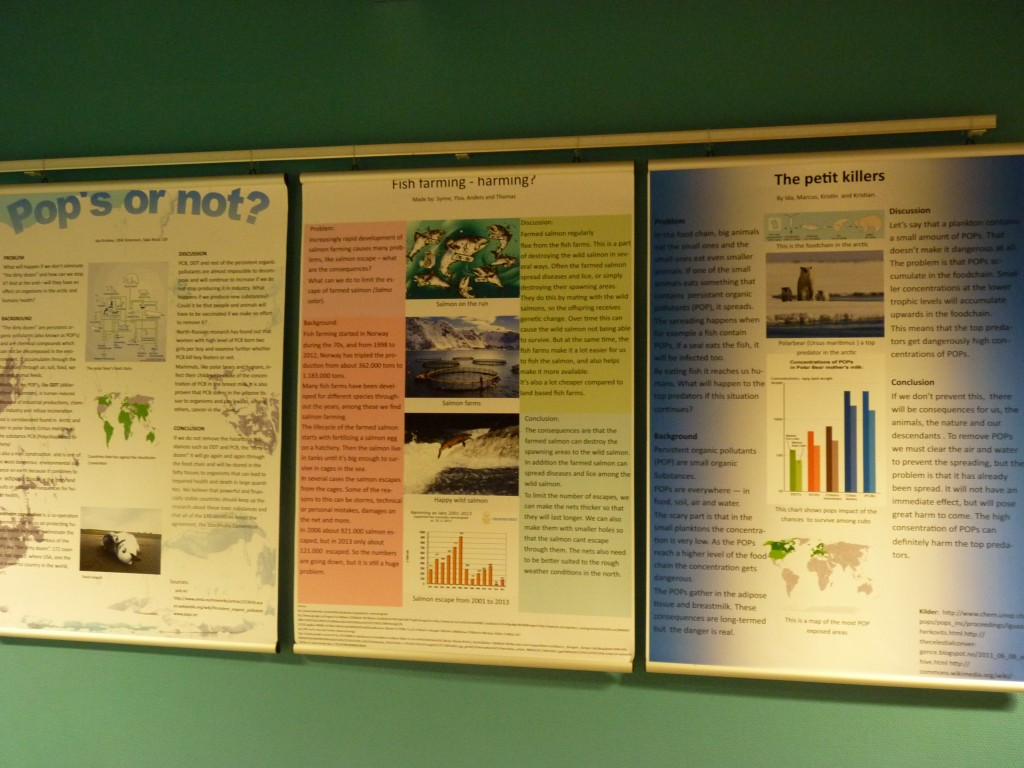 Young scientists' work on display