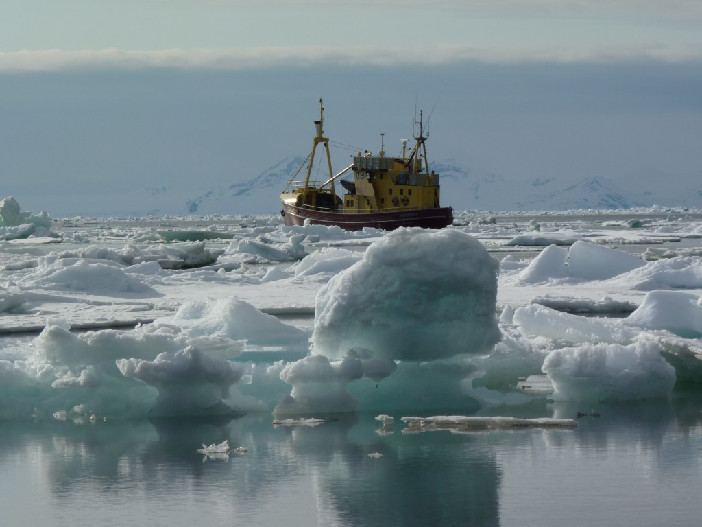 ship in icebergs off Spitsbergen by Irene Quaile