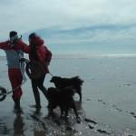 Michael Wigge und Sabine Kolk spazieren mit Hund im Watt