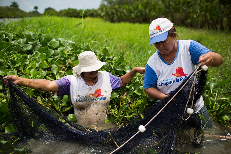From artisanal fishing to working in fruit plantations nearly 100,000 women have secured gainful employment thanks to the vocational training provided under the Chapéu de Palha Mulher, a ground-breaking government initiative in Brazil. (© UN Women/ Lianne Milton)